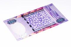 Банкнота валюты Африки Стоковое Изображение RF