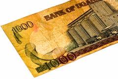 Банкнота валюты Африки Стоковые Фотографии RF