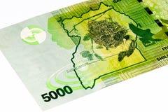 Банкнота валюты Африки Стоковое Изображение