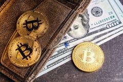 Банкноты бумажника и доллара Bitcoins Стоковые Фото