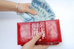Банкноты и портмоне Стоковые Фотографии RF