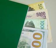 Банкноты с зеленым пасспортом - близкое поднимающим вверх Стоковое фото RF