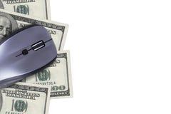 100 банкнот доллара с мышью Стоковое Изображение RF