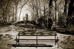 Банко отсутствие Central Park Стоковое Изображение RF