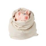 банк мешка piggy Стоковая Фотография RF