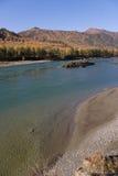 банк песочный Стоковое Изображение RF