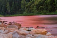 Банк реки на заходе солнца Стоковое Фото