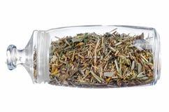 Банк чая трав Стоковая Фотография RF