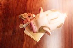банк чеканит piggy пинк Стоковое Фото