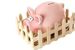 банк piggy Стоковые Фотографии RF