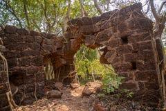 Баньян джунглей укореняет покрывать старую стену здания стоковая фотография rf
