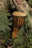 Барабанчик Djembe в природе Стоковая Фотография