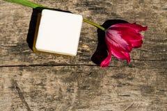 2 бара естественного мыла и красного тюльпана цветут Стоковые Фотографии RF