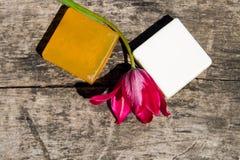 2 бара естественного мыла и красного тюльпана цветут Стоковая Фотография