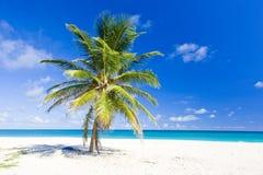 Барбадосские островы Стоковые Изображения RF