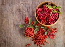 Барбарис и сухие ягоды goji Стоковое Изображение
