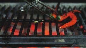 Барбекю варя зажаренный перец овощей мозоли, грибов, чеснока и chili акции видеоматериалы