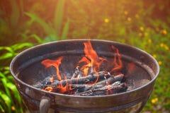 Барбекю в природе, варя дома Стоковые Фото