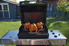 Барбекю в саде с цыпленком стоковые фотографии rf