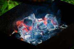 Барбекю для shish kebabs, углей барбекю, углей березы горит, уголь в гриле Стоковые Фото