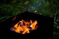Барбекю для shish kebabs, углей барбекю, углей березы горит, уголь в гриле Стоковая Фотография RF