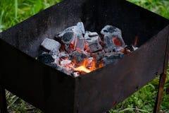 Барбекю для shish kebabs, углей барбекю, углей березы горит, уголь в гриле Стоковые Фотографии RF