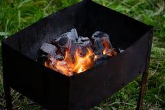 Барбекю для shish kebabs, углей барбекю, углей березы горит, уголь в гриле Стоковые Изображения