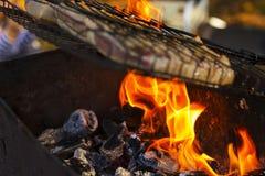 Барбекю на огне Стоковые Фотографии RF