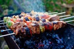 Барбекю Kebab Стоковые Изображения RF