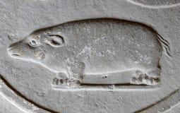 Барельеф животного на старой стене Стоковое Изображение RF