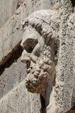 Барельеф шалфея на старой стене Стоковые Изображения