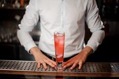 Бармен с стеклом вкусного свежего и сладостного красного коктеиля лета Стоковые Изображения RF