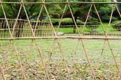 баррикадой Стоковые Фотографии RF