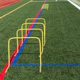 24 барьера шага банана дюйма желтых на дерновине field Стоковые Изображения RF