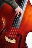 басист Стоковые Фотографии RF