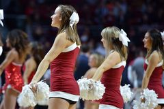 2015 баскетбол NCAA - Виск-Цинциннати Стоковая Фотография