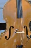 Басовая скрипка Стоковые Изображения RF