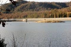 Басовое озеро, национальный лес Сьерры, Madera County, Калифорния стоковые фотографии rf