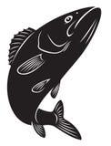 Басовые рыбы иллюстрация вектора