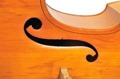 басовый двойник детали стоковая фотография rf