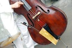 басовый двойной играть музыканта Стоковая Фотография