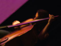 басовый двойной игрок одичалый Стоковое Изображение