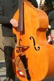 басовый игрок Стоковые Фотографии RF