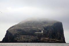 Басовый утес, Шотландия Стоковые Изображения