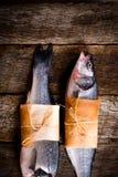 2 басовых рыбы Стоковые Изображения RF
