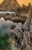 бассеины porto moniz Мадейры острова естественные стоковые изображения