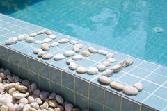 ` Бассейна ` надписи положено вне камешком на сторону бассейна стоковое изображение rf