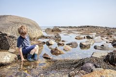 Бассейны прилива мальчика исследуя на Нью-Хэмпширский побережье стоковая фотография