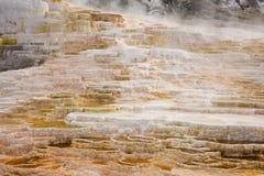 Бассейны травертина минеральные на Mammoth Hot Springs в национальном парке Йеллоустона Стоковая Фотография RF