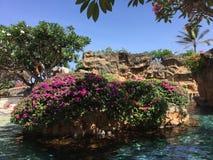 Бассейн Бали стоковое изображение